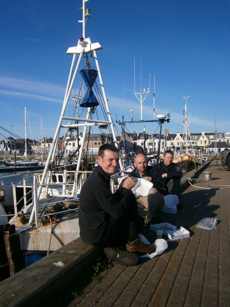 Great Hake, and no Gannet.