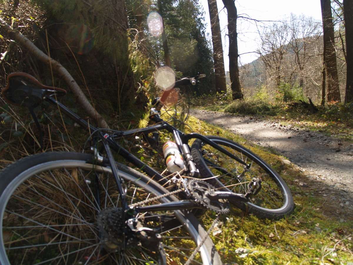 Gravel Rides