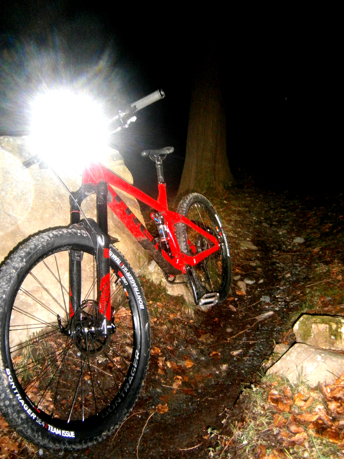 Guided Night Riding