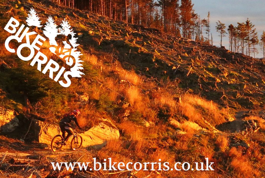 Dave from Bike Corris in the Dyfi Forest