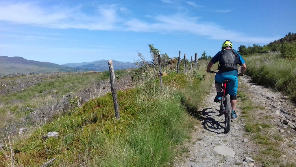 Insider's Guide to Coed y Brenin, Snowdonia, Wales